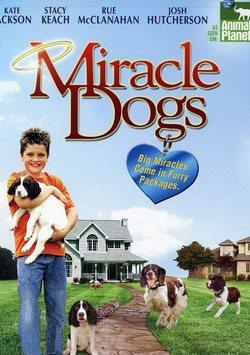 Mucize Köpekler - Miracle Dogs