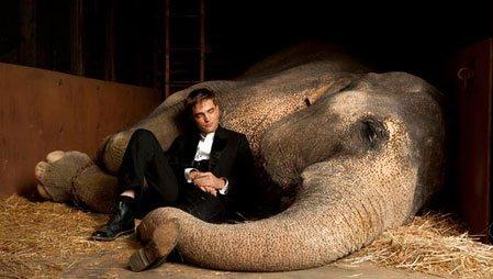Aşkın Büyüsü - Water For Elephants izle