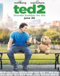 Digiturk Salon 1, Ayı Teddy 2 - Ted 2