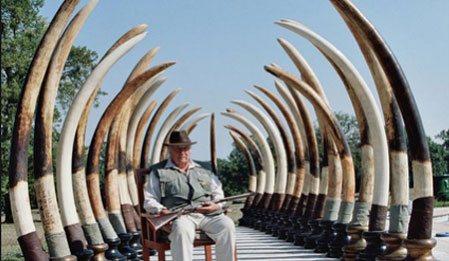 Filleri Yakalamak - Hunting Elephants izle