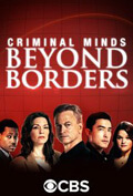 bein series vice, Criminal Minds: Beyond Borders