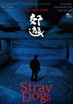 Sokak Köpekleri - Jiao You (Stray Dogs)