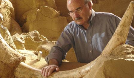 Tarih Öncesi Yırtıcılar Wild - Prehistoric Predators  izle